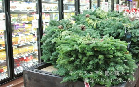 カハラモール・ホールフーズ・クリスマス