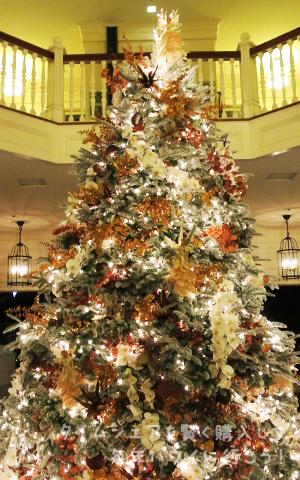 モアナサーフライダー・クリスマスツリー