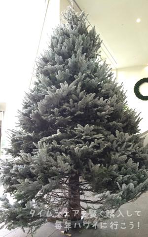ハワイキタワー・クリスマスツリー